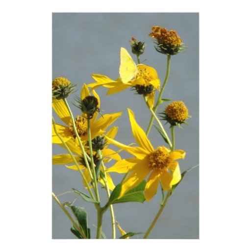 Yellow Butterfly On Yellow Flowers Personalized Stationery
