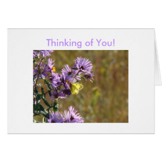Yellow Butterfly & Pretty Lavendar Weed, Thinki... Card