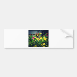 Yellow Butterfly with Flowers Photo Bumper Sticker