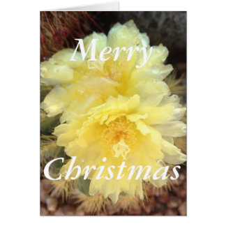 Yellow Cactus Bloom Christmas Card