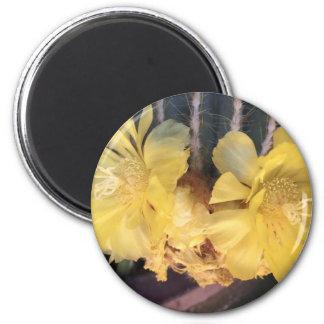 Yellow cactus flower 2 inch round magnet