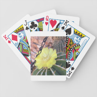 Yellow cactus flower bicycle playing cards