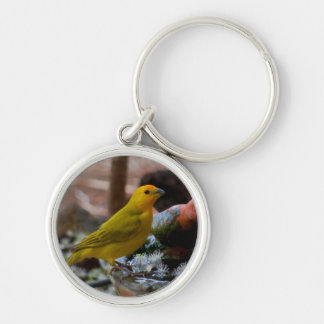 Yellow Canary Birds of Hawaii Silver-Colored Round Keychain