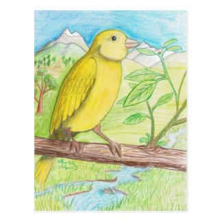 Yellow Canary in the Meadow Postcard