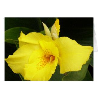 Yellow Canna Card