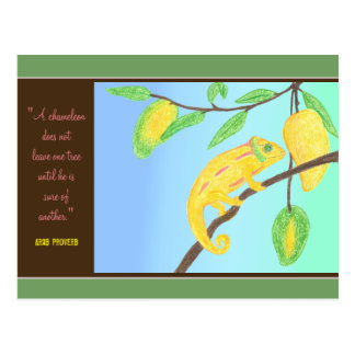 Yellow Chameleon in a Mango Tree and Arab Proverb Postcard