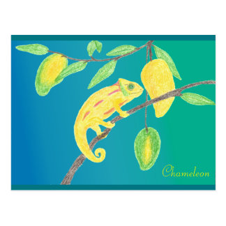 Yellow Chameleon in A Mango Tree Postcard