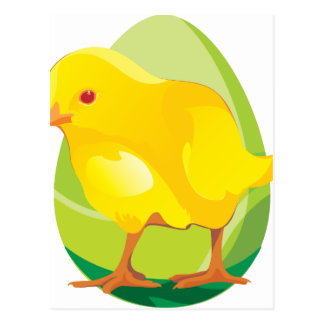 yellow chicken postcard