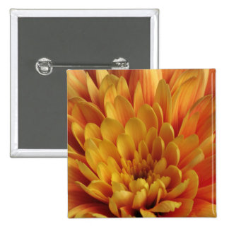 Yellow Chrysanthemum 2 Inch Square Button