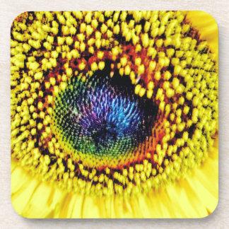 Yellow Closeup Coaster