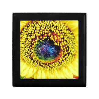 Yellow Closeup Gift Box