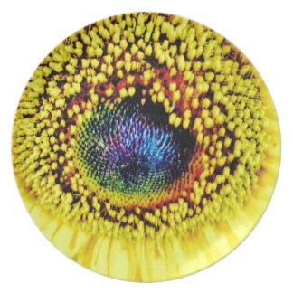 Yellow Closeup Plate
