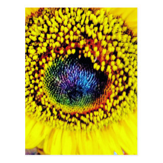 Yellow Closeup Postcard