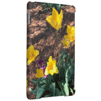 yellow colored tulip type flowers in spring iPad air cover