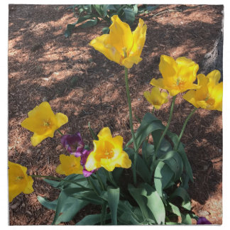 yellow colored tulip type flowers in spring napkin