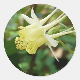 yellow columbine classic round sticker