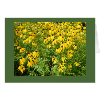 Yellow Coneflower Blank Note Card