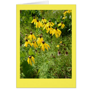 Yellow Coneflower II Blank Note Card