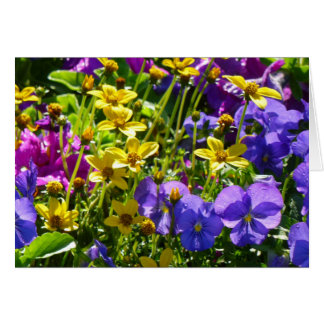 Yellow Coreopsis and Purple Violas Colorful Floral Card