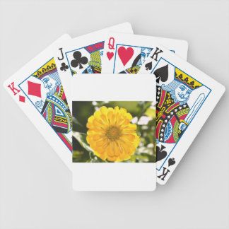Yellow cosmo bicycle playing cards