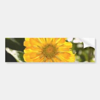 Yellow cosmo bumper sticker