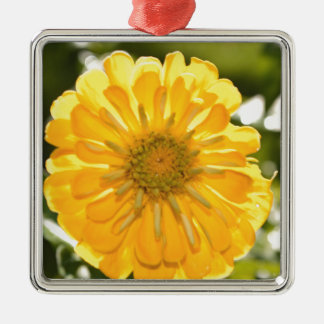 Yellow cosmo metal ornament