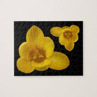 Yellow Crocus Puzzle