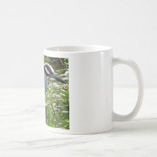 Yellow Crown Night Heron Coffee Mug