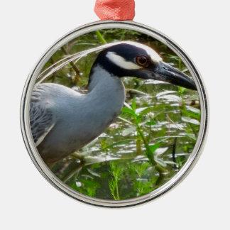Yellow Crown Night Heron Metal Ornament