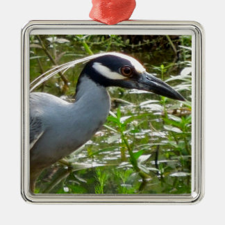 Yellow Crown Night Heron Silver-Colored Square Ornament