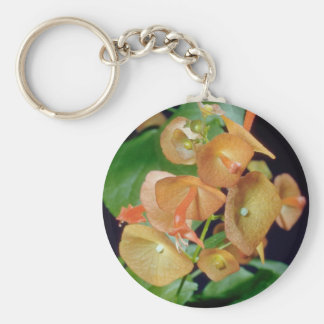 yellow Cup and saucer (Holmseioldia manguinea) flo Keychain