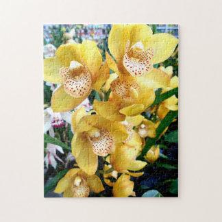 Yellow Cymbidium Orchids Jigsaw Puzzle