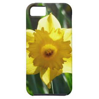 Yellow Daffodil 02.2_rd iPhone 5 Cover