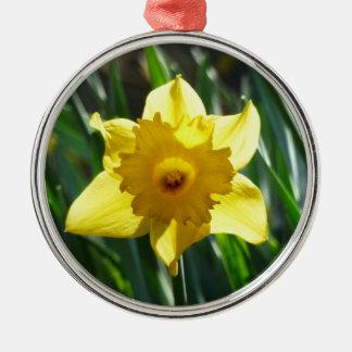Yellow Daffodil 02.2_rd Metal Ornament