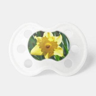 Yellow Daffodil 02.2_rd Pacifier