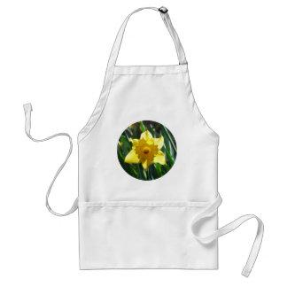 Yellow Daffodil 02.2_rd Standard Apron