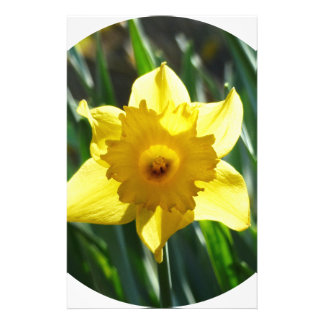 Yellow Daffodil 02.2_rd Stationery
