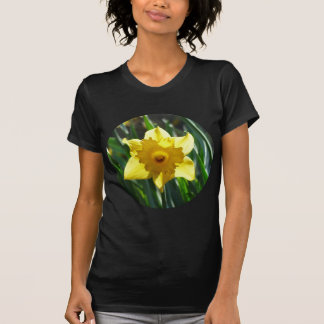 Yellow Daffodil 02.2_rd T-Shirt