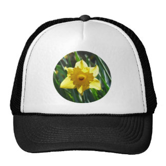 Yellow Daffodil 02.2_rd Trucker Hat