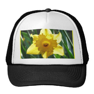 Yellow Daffodil 02.3. Trucker Hat