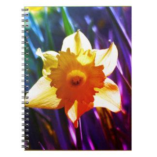 Yellow Daffodil 03.0.g.F Spiral Notebook