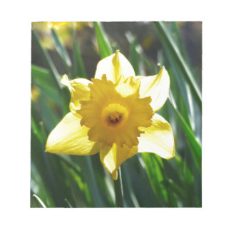 Yellow Daffodil 03.0.g Notepad