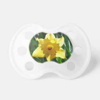 Yellow Daffodil 03.0.g Pacifier