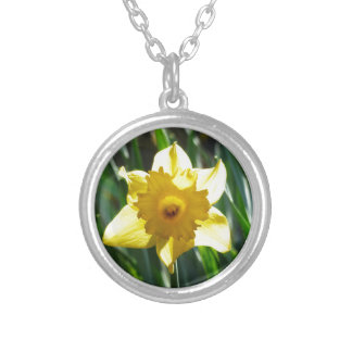 Yellow Daffodil 03.0.g Silver Plated Necklace