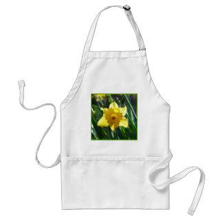Yellow Daffodil 03.0.g Standard Apron