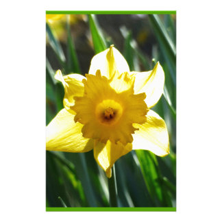 Yellow Daffodil 03.0.g Stationery