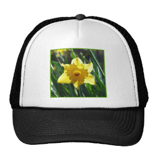 Yellow Daffodil 03.0.g Trucker Hat