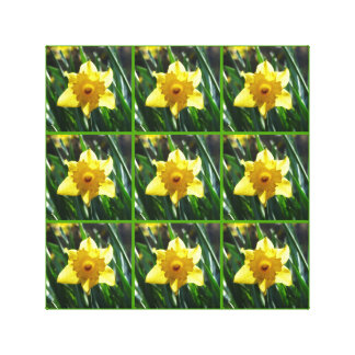 Yellow Daffodils 03.0.2.g Canvas Print