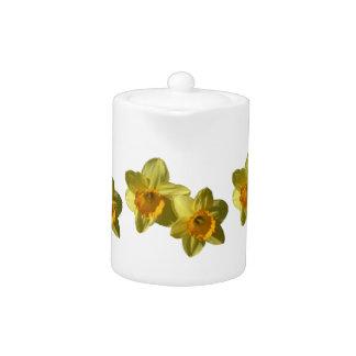Yellow Daffodils 2.2.3