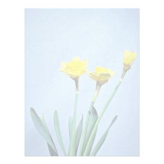 yellow Daffodils flowers Letterhead Template
